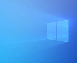 Nemesis N3090 Windows 10 Home